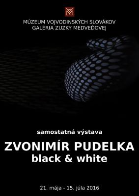 Zvonimir Pudelka Plagat black and white1