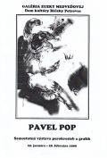 Pavel Pop